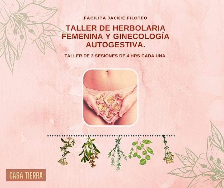 Imagen de Taller de Herbolaria Femenina y Ginecologia Autogestiva