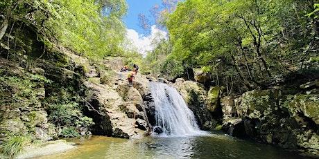 Women's Rainforest Canyon Adventure // Sunday 31st Jan tickets