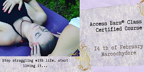 Access Bars® Class - Certified Course tickets