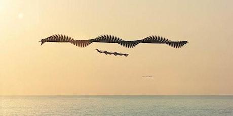 Inauguració de l'exposició «Ornitographies» entradas