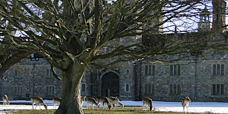 Timed car parking at Knole (18 Jan - 24 Jan) tickets