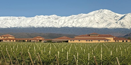 Small Producer Live Online Winemakers' Series: Argentina's Finca Decero tickets