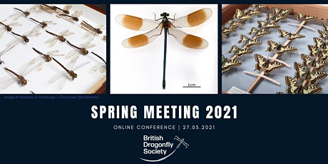 British Dragonfly Society Spring Meeting 2021 tickets