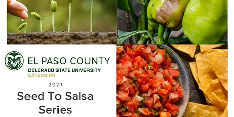 Seed to Salsa Series - Online tickets
