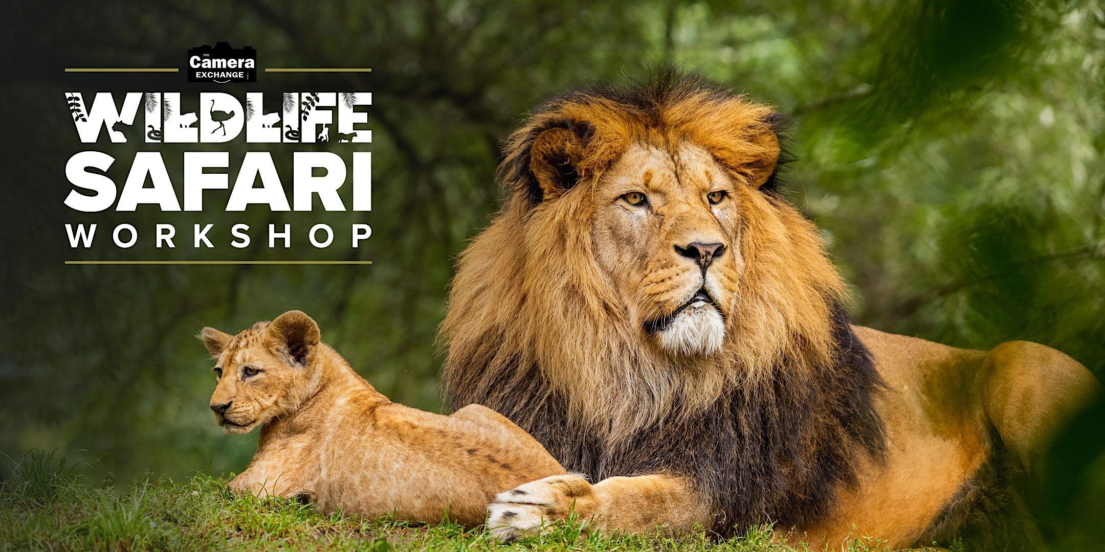 Wild Life Safari Workshop