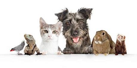 Nos animaux de compagnie billets
