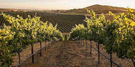 Pinot Noir and Terroir: Virtual Event billets