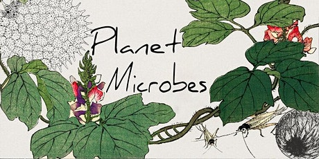 Planet Microbes: Environmental Microbiology Discussion Group boletos