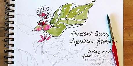 1-3PM Nature Journaling with Watercolor - Elizabeth Higgins tickets