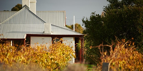 Magill Estate Shiraz tickets
