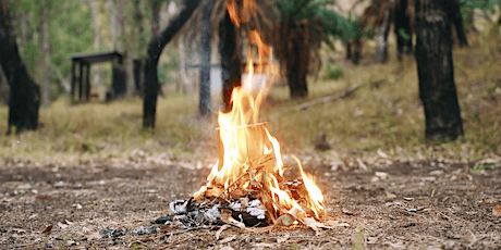 Panel Discussion: Cultural Fire and Art tickets