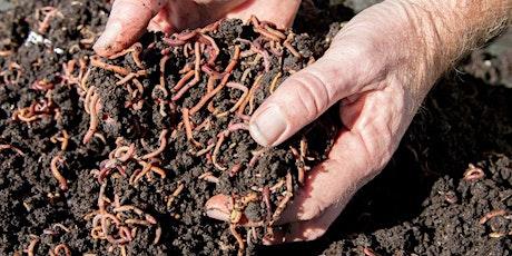 FREE Worm farming Intermediate level tickets