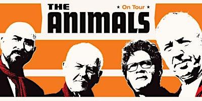 THE ANIMALS (UK)