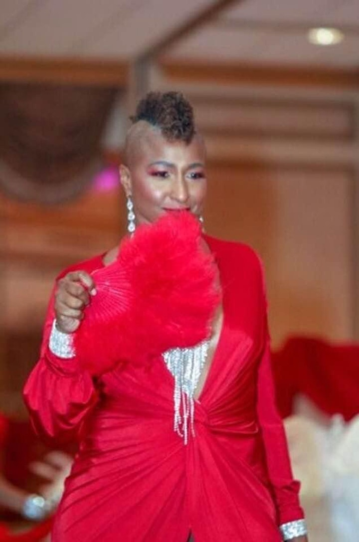 Virtual Red Dress Gala Awards image