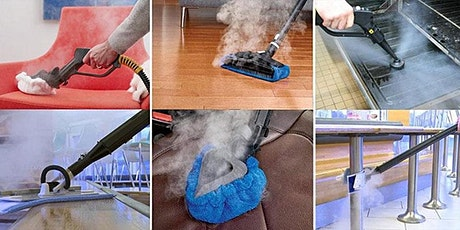 ZOOM Demo: Steam Vapour Cleaning 2021 tickets