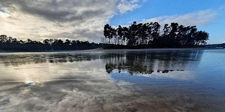 Remotely Guided Forest Bathing / Shinrin-yoku Walk tickets