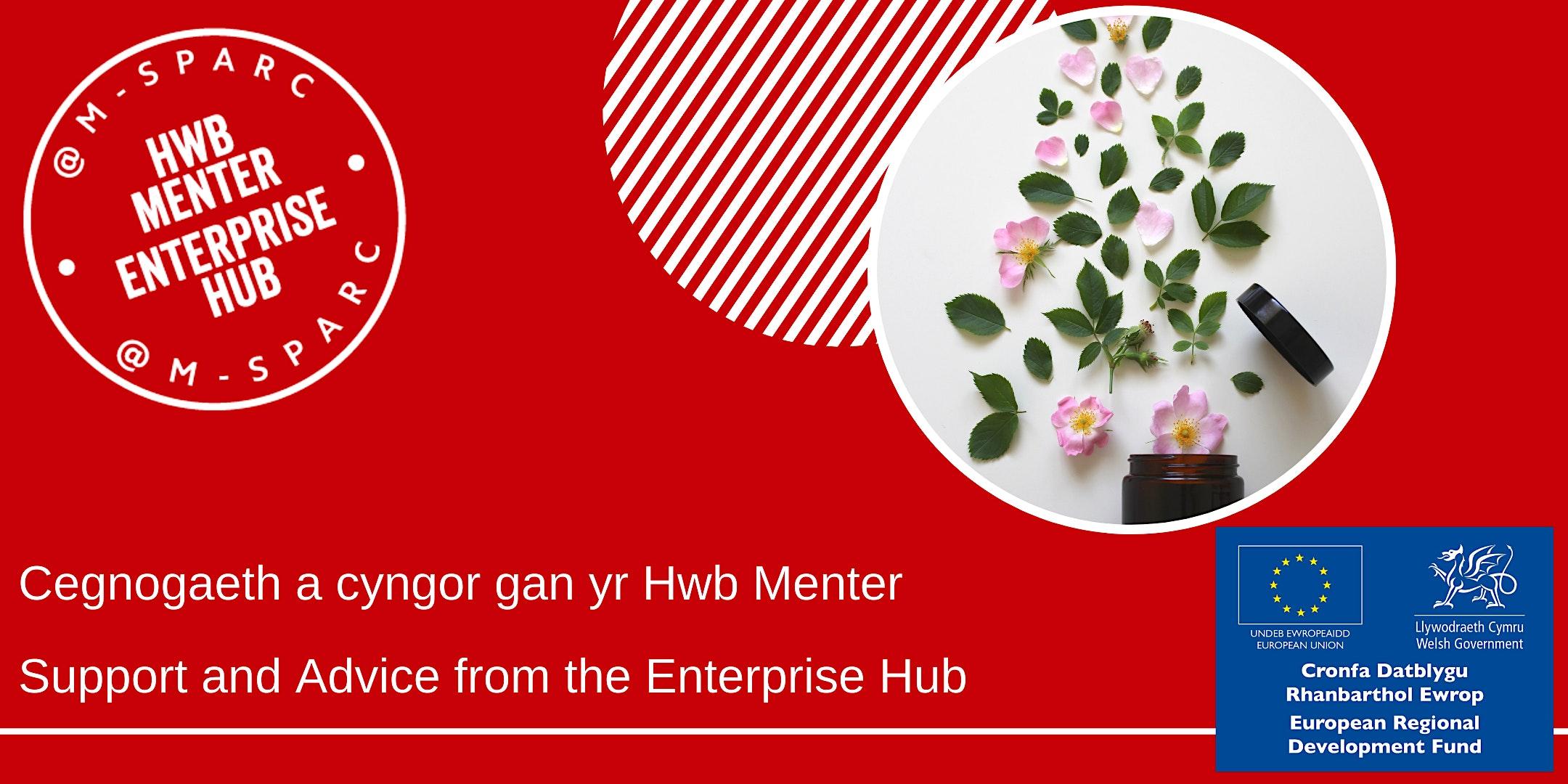 Cymorth gan yr Hwb Menter - Support from the Enterprise Hub