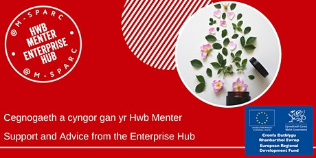 Cymorth gan yr Hwb Menter - Support from the Enterprise Hub tickets