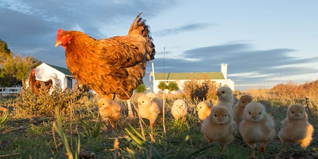 Poultry Seminar #4/5: Poultry Nutrition and Health tickets