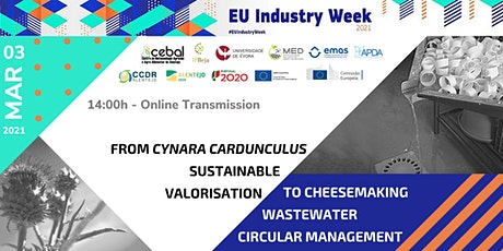 Cardoon sustainable valorisation &Cheesemaking wastewater circular managing ingressos