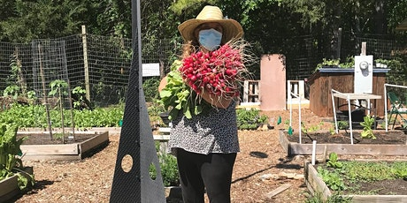 All About Briggs Ave. Community Garden and Intro to Grafting tickets