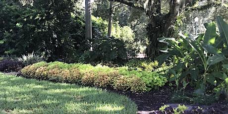 Transplanted Gardener (New to Florida?) - Zoom Virtual Class tickets