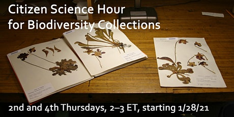 Citizen Science Hour for Biodiversity Collections tickets