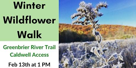 Winter Wildflower Walk - Greenbrier River Trail tickets