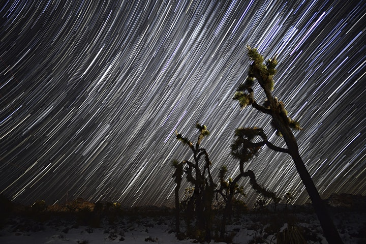 Star Trails: Giving the Night Sky a New Spin - Online w/Nikon image