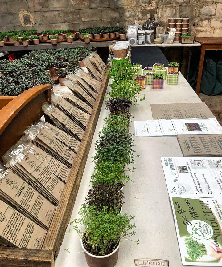 Let's Grow! Growing Microgreens With Sprout House Farms image