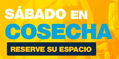 #SábadoEnCosecha | 6PM | 16 enero 2021 tickets