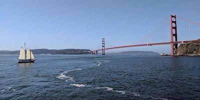 Marine Wildlife and Ecology - Sail under the Golde