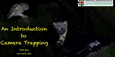 Beginners Guide to Camera Traps tickets
