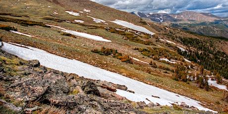 Disturbances in Arctic Landscape Ecology tickets