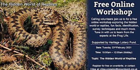 Online Volunteer Workshop -  The Hidden World of Reptiles tickets