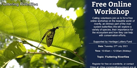 Online Volunteer Workshop - Fluttering Riverflies tickets