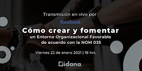 Crea un Entorno Organizacional Favorable de acuerdo con la NOM-035 entradas