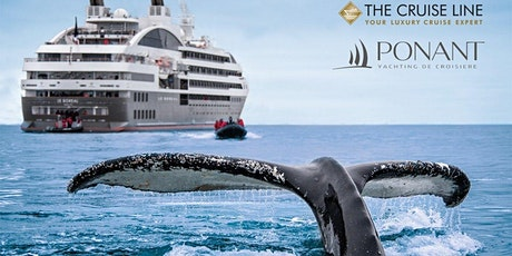 A Luxury Cruise in Antarctica | Ponant tickets