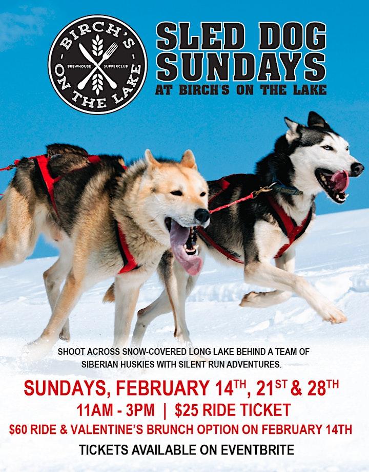 Sled Dog Sundays at Birch's on the Lake image