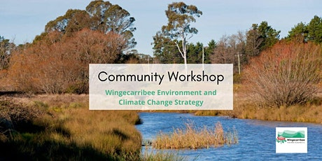 Online Community Workshop - Environment  & Climate Change Strategy tickets