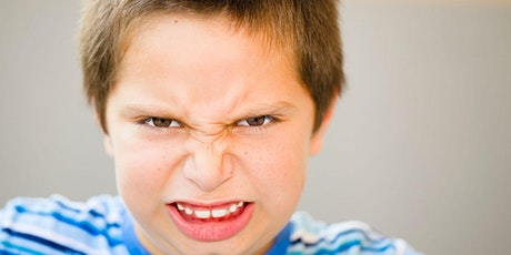 The Boy Anger CURE: How to Address Your Son's Anger Differently tickets