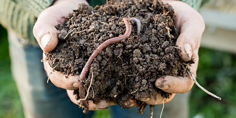 Sustainability - Composting & Worms @ Wanneroo Library tickets