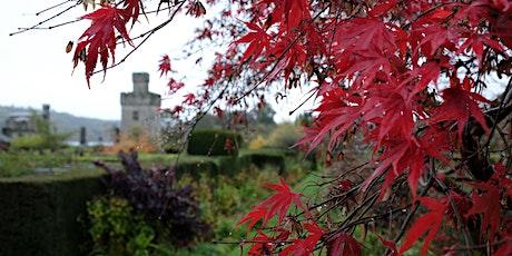 OCTOBER - VISIT THE GARDENS AT LISMORE CASTLE & LISMORE CASTLE ARTS tickets