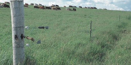 Emerging Forage Options for Eastern NC tickets