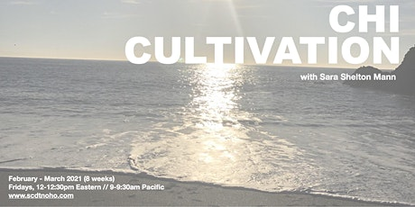 Chi Cultivation with Sara Shelton Mann tickets