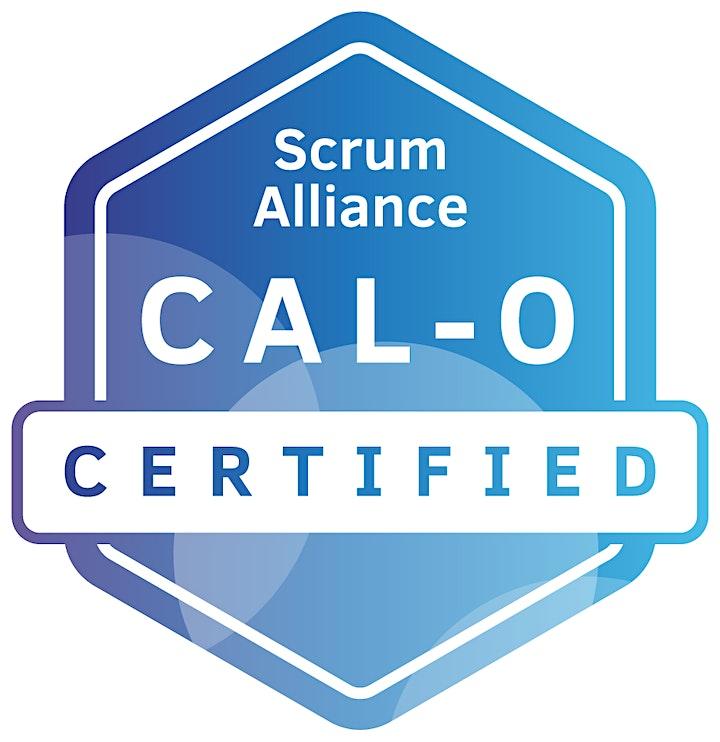 Scott Dunn|Online|Agile Leadership Training  Organizations|CAL-O| March2021 image