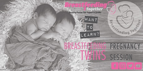 Breastfeeding Twins Pregnancy Session tickets