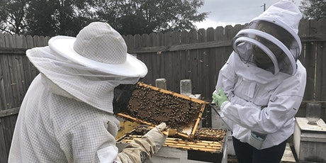 Spring 2021 Beginner Beekeeper's Short Course tickets