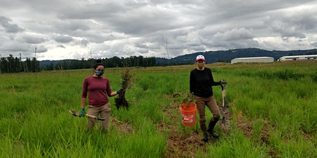 Dig it, Plant it, Do it Again! Volunteer Planting at Sandy River Delta tickets