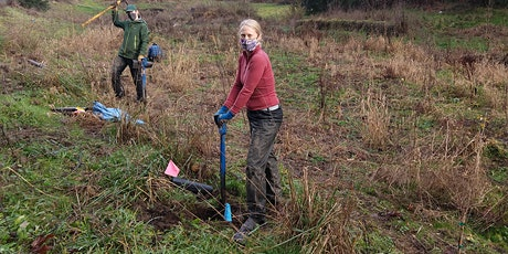 Salmon Creek Volunteer Planting- Dig it, Plant it, Do it Again! tickets